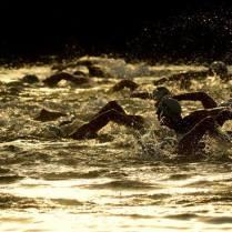 Swim Start - Jebel Ali Tri Oct 2013